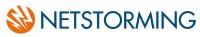 Netstorming logo